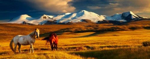 mongolia-header