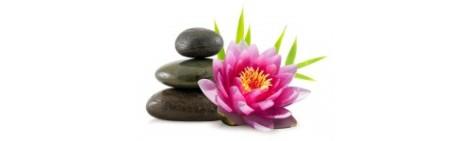soyez-zen-solutions-aides-dormir-la-boutique-du-sommeil