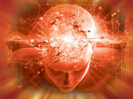Cerebro cuántico