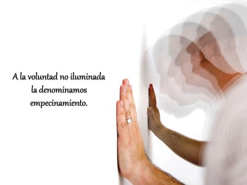 Las Voces del Silencio IX Diapositiva 08