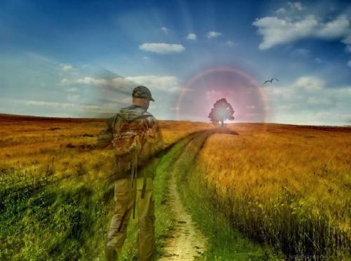 Camina hacia la luz