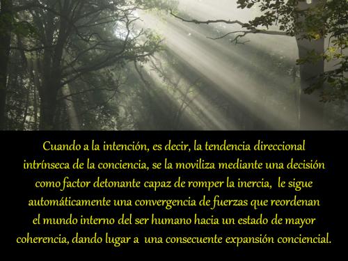 02-Las Voces del Silencio XXXVI