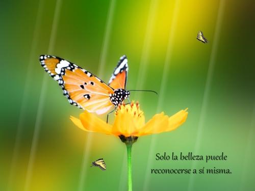 01-Las Voces del Silencio XLVIII