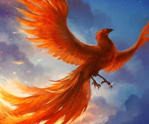 phoenix-bird-9