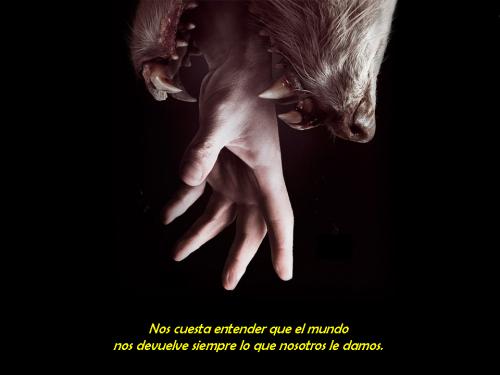01-las-voces-del-silencioliii