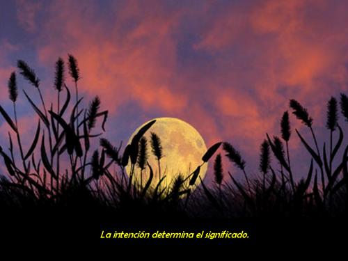06-las-voces-del-silencio-lv